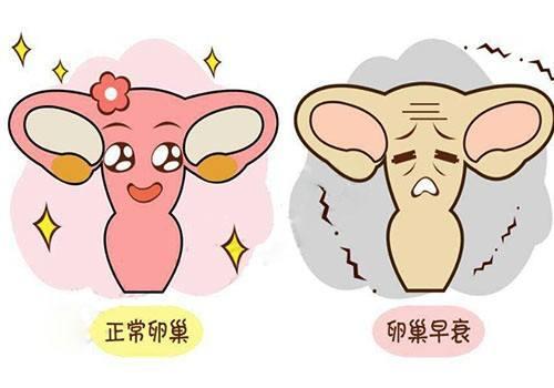 上海第九人民医院治疗卵巢早衰的技术怎么样?